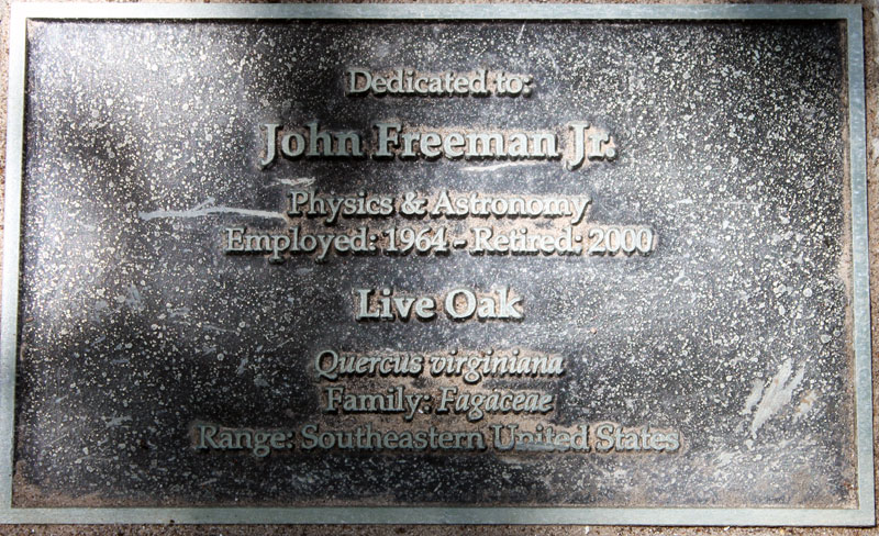 Retiree Tree Plaque, Rice University, John Freeman