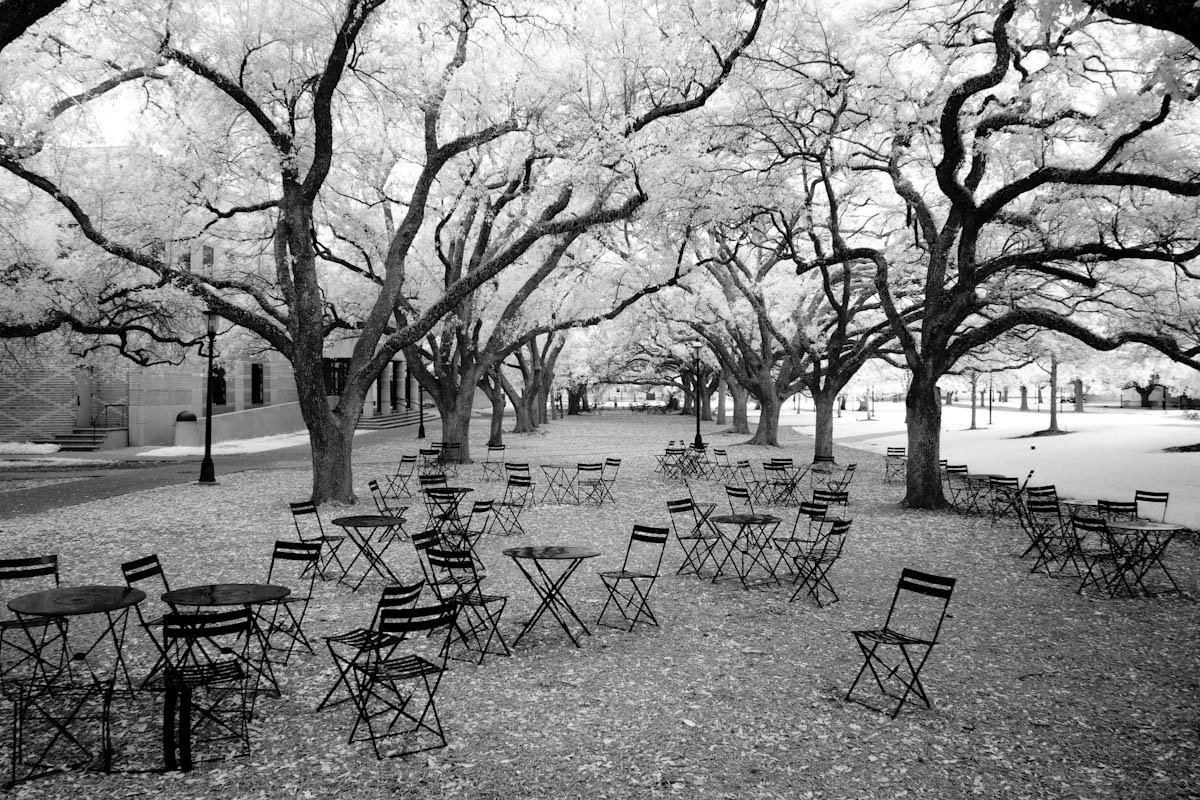 Rice University infrared photo by Ed Zimmeth